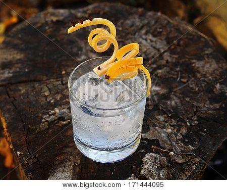 Gin Tonic with Grapefruit Super Twist Garnish