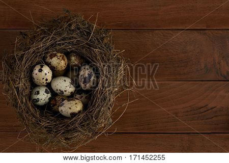 Quail easter egg in nest on wooden table background with copy space top view. Easter food concept.