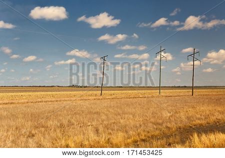 Australian plain, moving vehicle view with foreground motion blurred