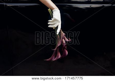 elegant gorgeous bride hand in silk glove holding wedding bouquet of callas on backgound of stylish luxury black car. unusual adorning in retro style. minimalistic