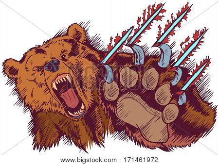 Vector Cartoon clip art illustration of a brown bear mascot slashing or clawing at the foreground.