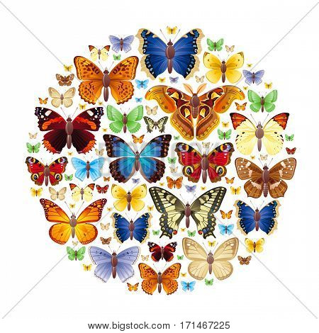 Vector illustration of insects icons set. Abstract modern concept with natural symbols - atlas moth, peacock, admiral, skipper, mourning cloak, swallowtail butterflies. Template animal collection