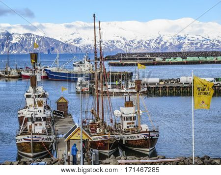 HUSAVIK ICELAND - MAY 19 2015: harbor with boats for whale watching in the Skjalfandi fjord. In Background Víknafjoell and Kinnarfjoel mountain range