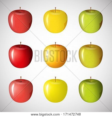Set of vector of apples of different colors