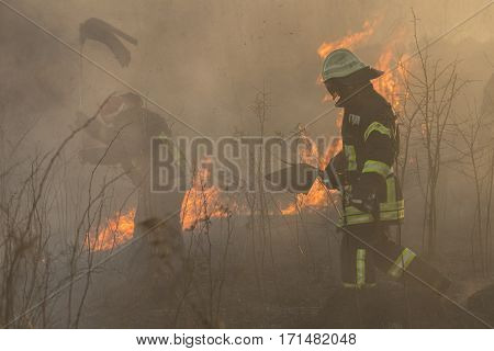 picture of firefighters battle a wildfire in sunset