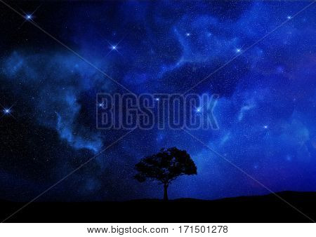 3D render of a tree landscape silhouetted against a night sky