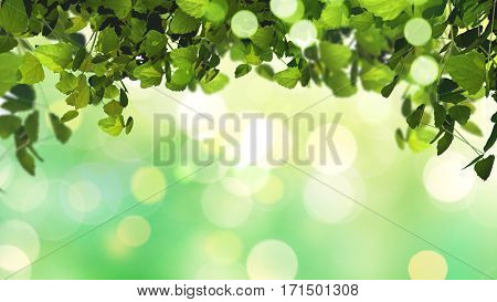 3D render of leaves on a bright sunny defocussed background