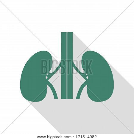Human kidneys sign. Veridian icon with flat style shadow path.