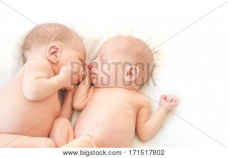 newborn twin babies portrait
