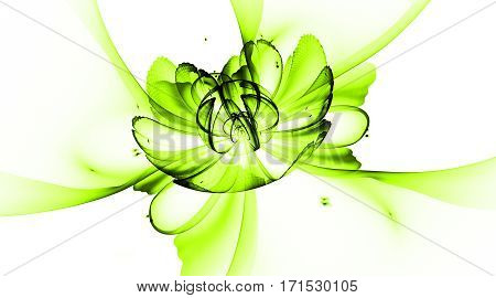 Abstract Exotic Flower With Textured Petals On White Background. Fantasy Fractal Design In Bright Gr