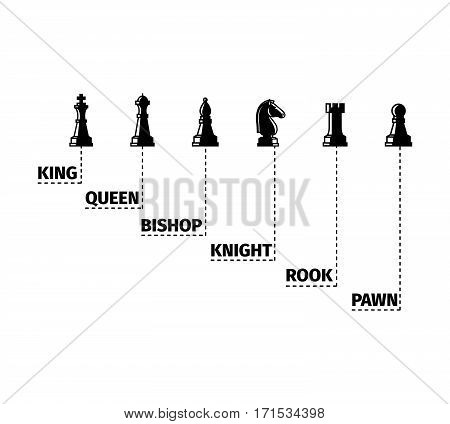 Set of named chess piece black isolated icons vector infographic