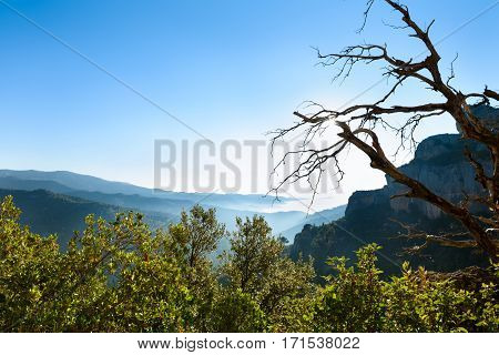 Pure summer sunny morning landscape. Beautiful view of the valley in fog. Catalonia, Spain, Europe.
