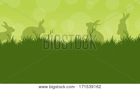 Bunny easter on green backgrounds vector art
