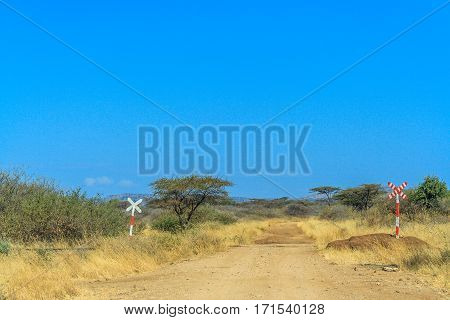 A view of African Savannah and dirt road with traffic sign