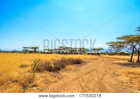 A view of african savannah and dirt road.