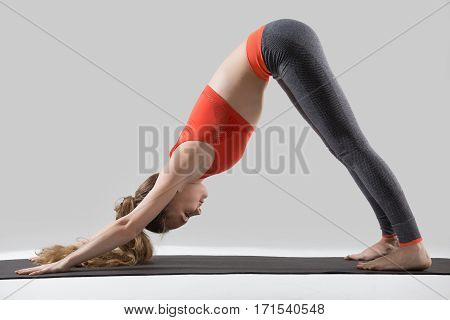 Young attractive woman practicing yoga, stretching in Downward facing dog exercise, adho mukha svanasana pose, working out, wearing sportswear, red tank top, pants, indoor full length, grey studio