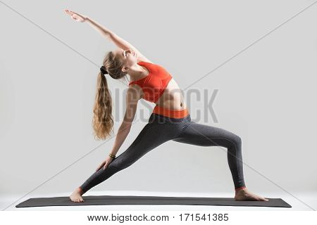 Young attractive yogi woman practicing yoga, doing Reverse Warrior exercise, Viparita Virabhadrasana pose, working out, wearing sportswear, red sports bra, pants, full length, isolated, grey studio