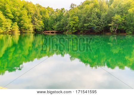 Reflection of trees on a lake surface. Photo taken in Bolu Yedigoller. Only trees and their reflections and some cloud's reflections are visible.