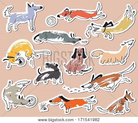 Hand drawn doodle cute dogs. Stickers set with plaing pets with disk freesbee ball sniffing tracking. Artistic canine vector characters