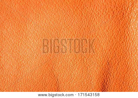 Leather Creased Background