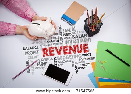 Revenue, Money and Profit Concept. Business woman with a piggy bank.