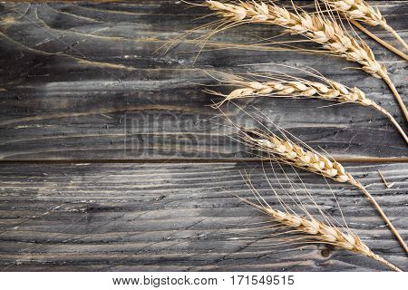 Wooden background in rustic style with wheat spikelets