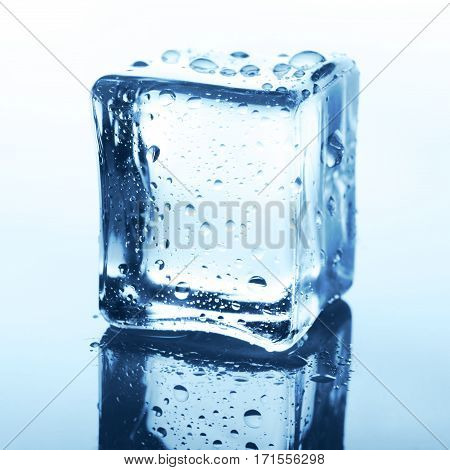 Transparent ice cube with reflection on white background. Closeup of cold crystal block on blue glass with water drops