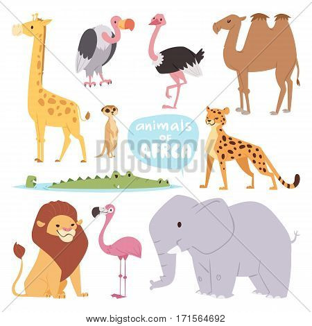 Africa animals large outdoor graphic travel desert mammal wild portrait and cute cartoon safari park national savannah elephant flat vector illustration. Tourism zoo wilderness leopard and other.