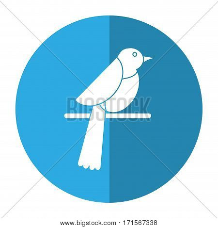 bird dove fauna fly shadow vector illustration eps 10