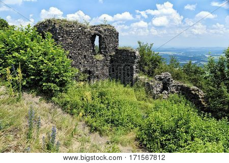 Ruins of medieval stronghold overgrown by vegetation