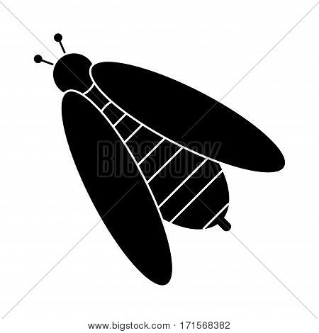 bee honey insect insect pictogram vector illustration eps 10