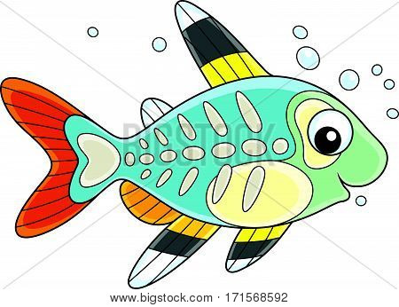 Vector illustration of a small brightly colored tropical fish with a transparent body