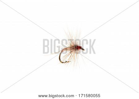 Trout Fly Or Fishing Lure Cut Out