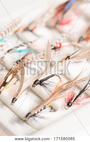 An assortment of trout flies or fishing hooks