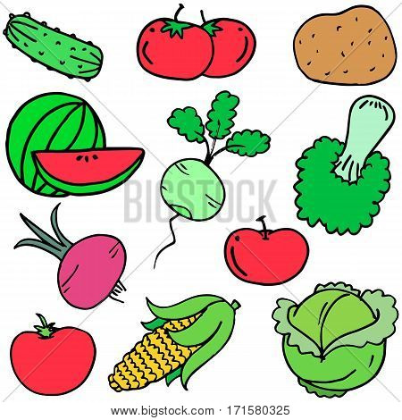 Collection stock of vegetables set vector art illustration