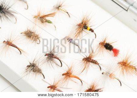 A variety of fishhooks or trout flies in case