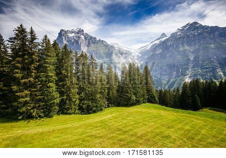 Impressive view of alpine Eiger village. Picturesque and gorgeous scene. Popular tourist attraction. Location place Swiss alps, Grindelwald, Bernese Oberland, Europe. Discover the world of beauty.