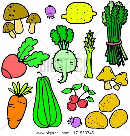 Collection stock of vegetables object vector illustration