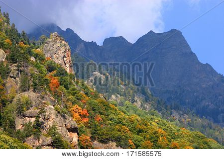 beautiful beginning of autumn in the high mountains