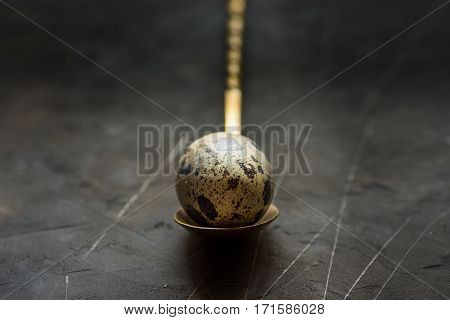 Quail egg on a vintage copper spoon close up black scratched concrete background Easter minimalistic moody conceptual