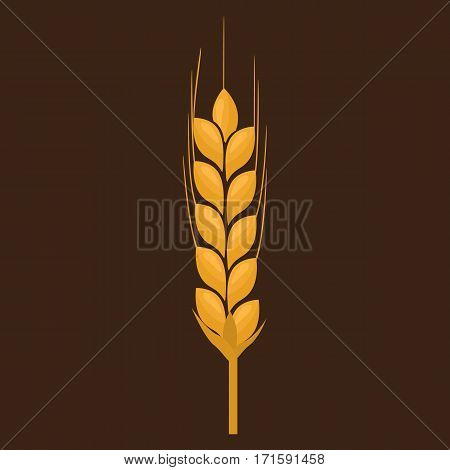 Wheat spike yellow isolated on white background. Ear organic with flat and solid color design. Vector Illustration