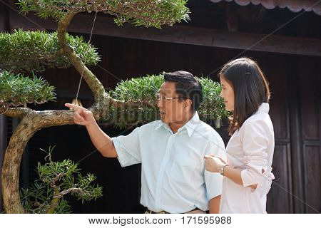 Profile view of young Asian woman and her senior dad standing at bonsai tree and looking at something with interest