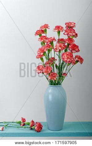 Beautiful Carnation cut flowers being put in vase