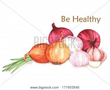 Hand-drawn watercolor food illustration of organic products: different onion and garlic isolated on the white background