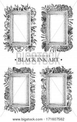 Set of rectangular frames with dotted flowers birds and plants drawn by hand with black ink. Graphic drawing pointillism technique. Floral background in dotwork style. Black and white