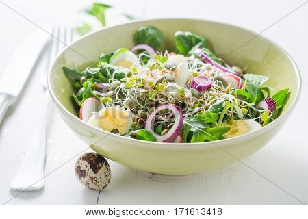 Healthy Green Salad With Onion, Quail Egg And Sprouts