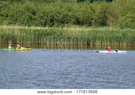 Canoe In The Biesbosch National Park,