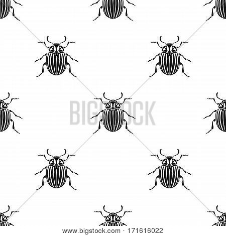 Colorado beetle icon in black design isolated on white background. Insects pattern stock vector illustration.