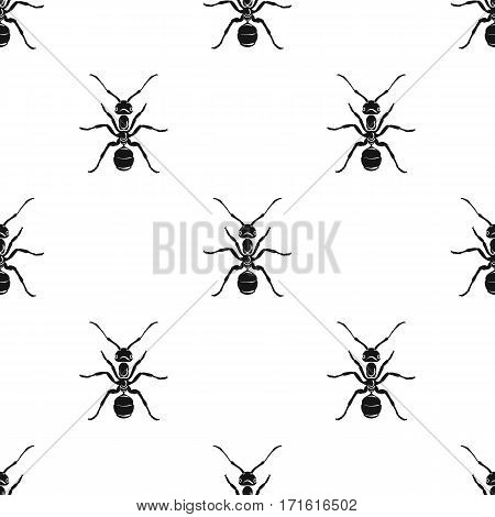 Ant icon in black design isolated on white background. Insects pattern stock vector illustration.