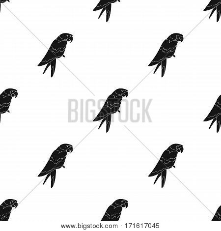 Pirate's parrot icon in black style isolated on white background. Pirates pattern vector illustration.
